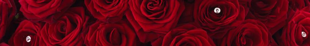Amazing 100 Red Rose Hand-tied