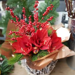 Rustic Red Amaryllis Hand-tied