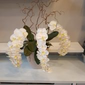 Large Faux White Orchid Display